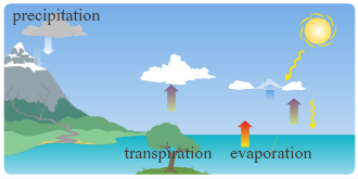 HTML5 Animation of Watercycle